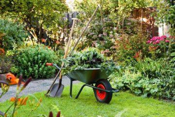 Kertgondozás, kertfenntartás, növényvédelem